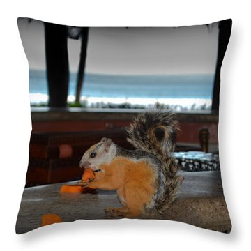 All Inclusive Squirrel Throw Pillow by Gary Keesler