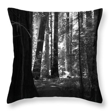 All Is Quiet Throw Pillow by Laurie Search