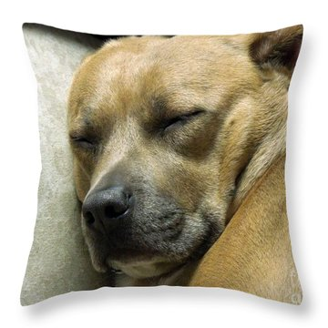 All Is Well Throw Pillow