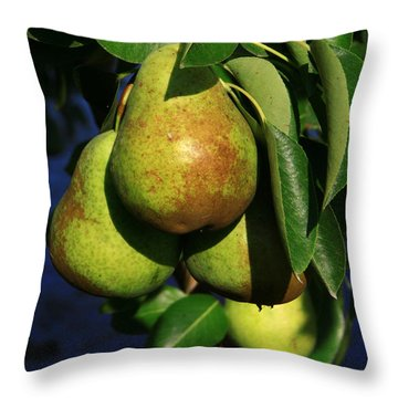 All Natural Throw Pillow