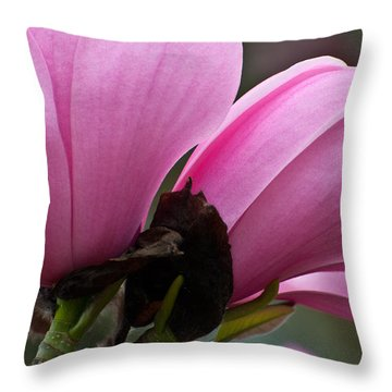 Throw Pillow featuring the photograph Pink Magnolia by Sabine Edrissi