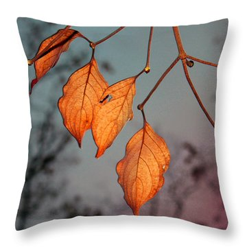 All That's Left Throw Pillow by Dolores  Deal