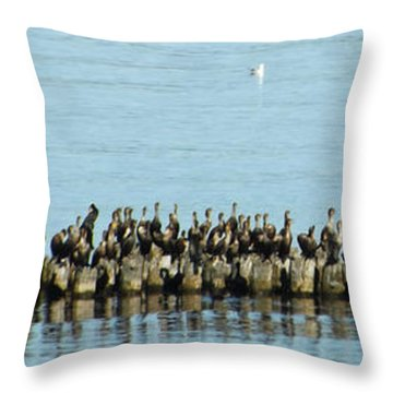 All The Birds Throw Pillow