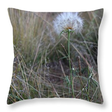 Throw Pillow featuring the photograph All The Small Things by Ruth Jolly
