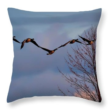 All Tohether Now Throw Pillow
