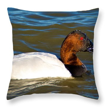 All Wet Throw Pillow