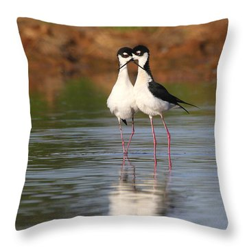 Throw Pillow featuring the photograph All You Need Is Stilt Love by Ruth Jolly