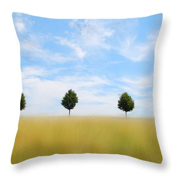 Allee  03 Throw Pillow by Hannes Cmarits