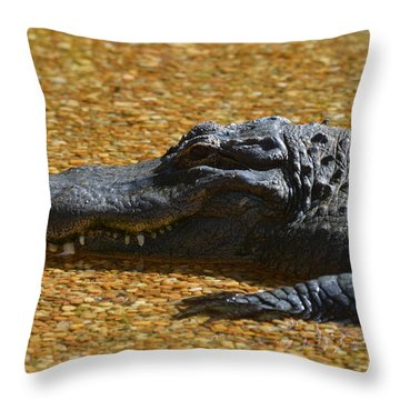 Alligator Throw Pillow by DejaVu Designs