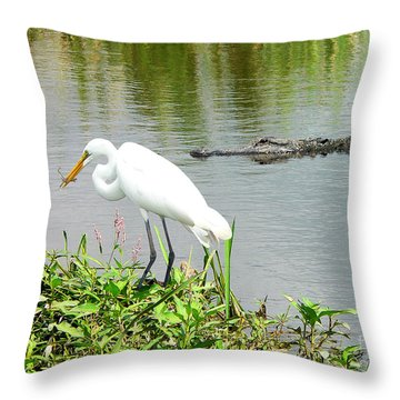 Alligator Egret And Shrimp Throw Pillow by Al Powell Photography USA