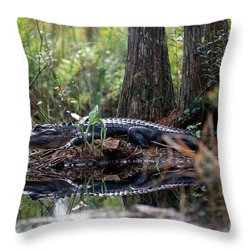 Alligator In Okefenokee Swamp Throw Pillow by William H. Mullins