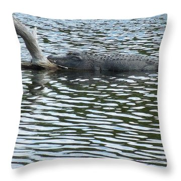 Throw Pillow featuring the photograph Alligator Resting On A Log by Ron Davidson