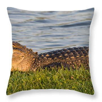 Alligator Smile Throw Pillow