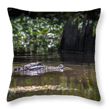 Alligator Swimming In Bayou 2 Throw Pillow