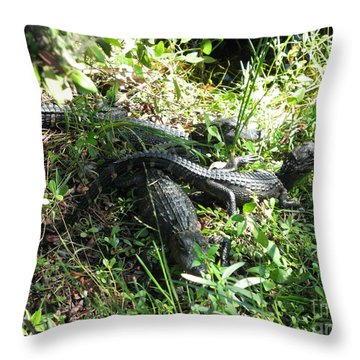 Throw Pillow featuring the photograph Alligatorbabys Waiting For Mommy by Christiane Schulze Art And Photography