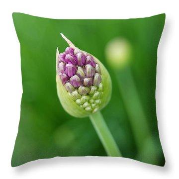 Throw Pillow featuring the photograph Allium Flower by Eva Kaufman