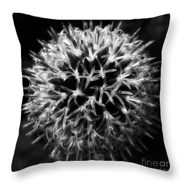 Throw Pillow featuring the photograph Allium by Inge Riis McDonald