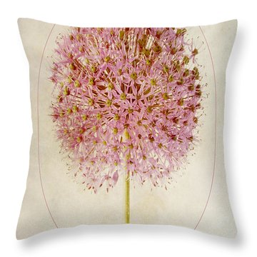 Allium Pink Jewel Throw Pillow by John Edwards
