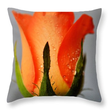 Allure Throw Pillow by Felicia Tica