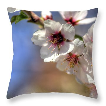 Throw Pillow featuring the photograph Almond Blossoms by Jim and Emily Bush