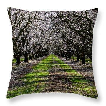 Almond Grove Throw Pillow