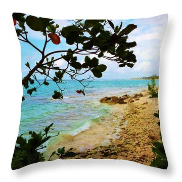Throw Pillow featuring the photograph Almond View by Amar Sheow