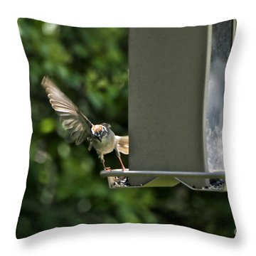 Throw Pillow featuring the photograph Almost A Ruff Bird Landing by Thomas Woolworth