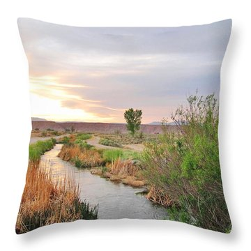 Throw Pillow featuring the photograph Almost Evening by Marilyn Diaz