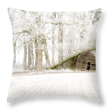 Almost Gone Throw Pillow by Jean Noren
