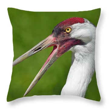 Almost Gone Throw Pillow by Tony Beck