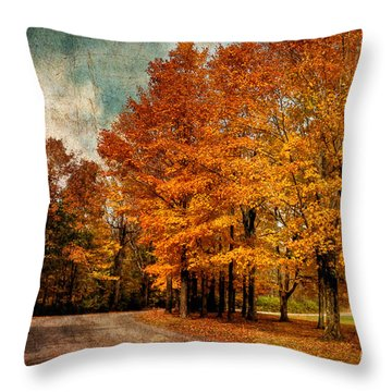 Almost Home Throw Pillow by Lois Bryan