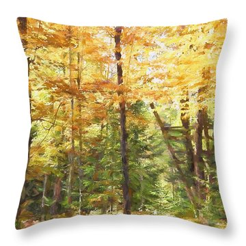 Almost Invisible In Minnesota Throw Pillow by Susan Crossman Buscho