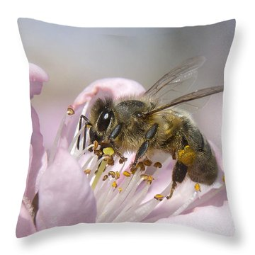 Throw Pillow featuring the photograph Almost Spring 01 by Kevin Chippindall