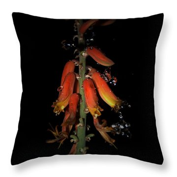 Throw Pillow featuring the photograph Aloe Flower by Leticia Latocki