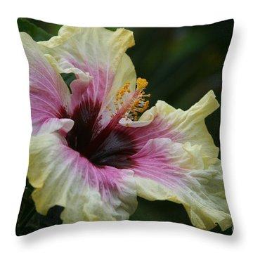 Aloha Aloalo Tropical Hibiscus Haiku Maui Hawaii Throw Pillow by Sharon Mau