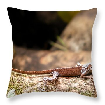 Aloha Anole   Throw Pillow