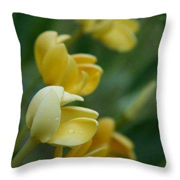 Aloha He Pua Lahaole Kula Gardenia Grandiflora Throw Pillow by Sharon Mau