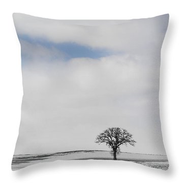 Alone And Cold Throw Pillow