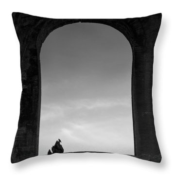 Alone Throw Pillow by Dave Bowman