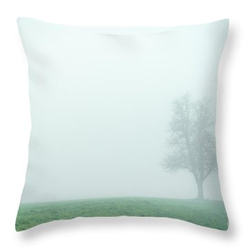 Alone In The Fog - Green Throw Pillow by Hannes Cmarits