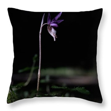 Throw Pillow featuring the photograph Alone In The Forest by Betty Depee