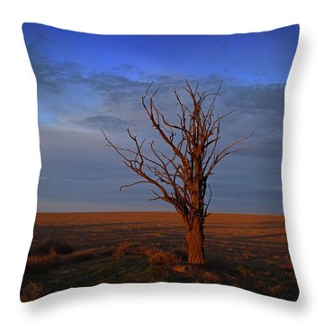 Throw Pillow featuring the photograph Alone Yet Not Alone by Lynn Hopwood
