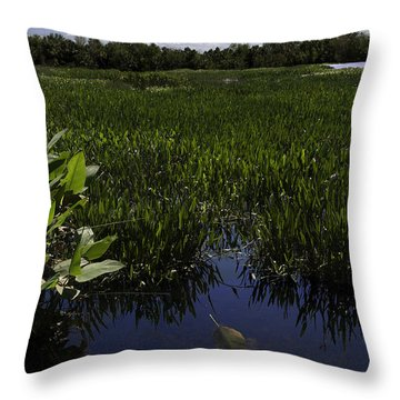 Alone Throw Pillow by Paul Plaine