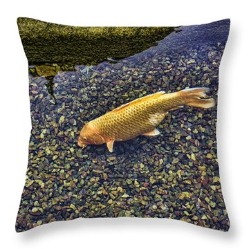 Throw Pillow featuring the digital art Alone by Photographic Art by Russel Ray Photos