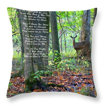 Throw Pillow featuring the digital art Alone With God by Lorna Rogers Photography