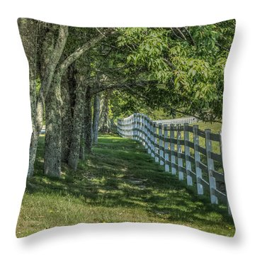 Throw Pillow featuring the photograph Along A Country Road by Jane Luxton