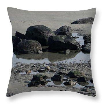 Along A Maine Beach Throw Pillow by Eunice Miller