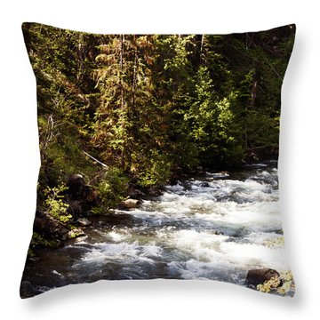 Along American River Throw Pillow