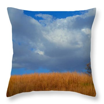 Along Big Bluestem Ridge Throw Pillow