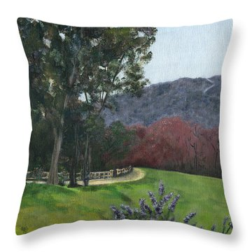 Along Cornell Road Throw Pillow